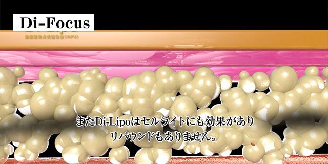 http://www.xn--b9j470sepq.com/img/dilipoend.jpg
